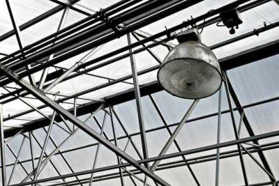 greenhouse light