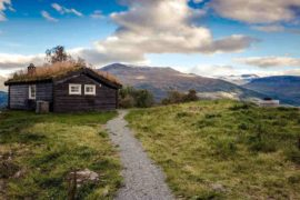 cabin with green roof - the basics of living off the grid