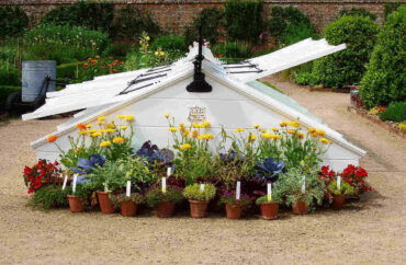 white cold frame with flowers in front - tiny greenhouses you can make