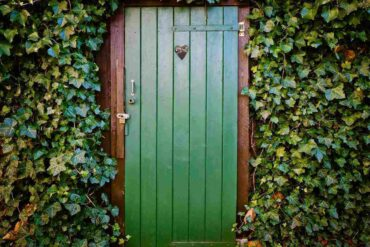 green door surrounded by plants - upgrades for green living