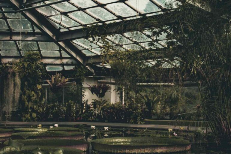 greenhouse - is a walipini style sunken greenhouse right for you