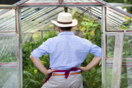Gardener - ways to make your greenhouse more eco-friendly