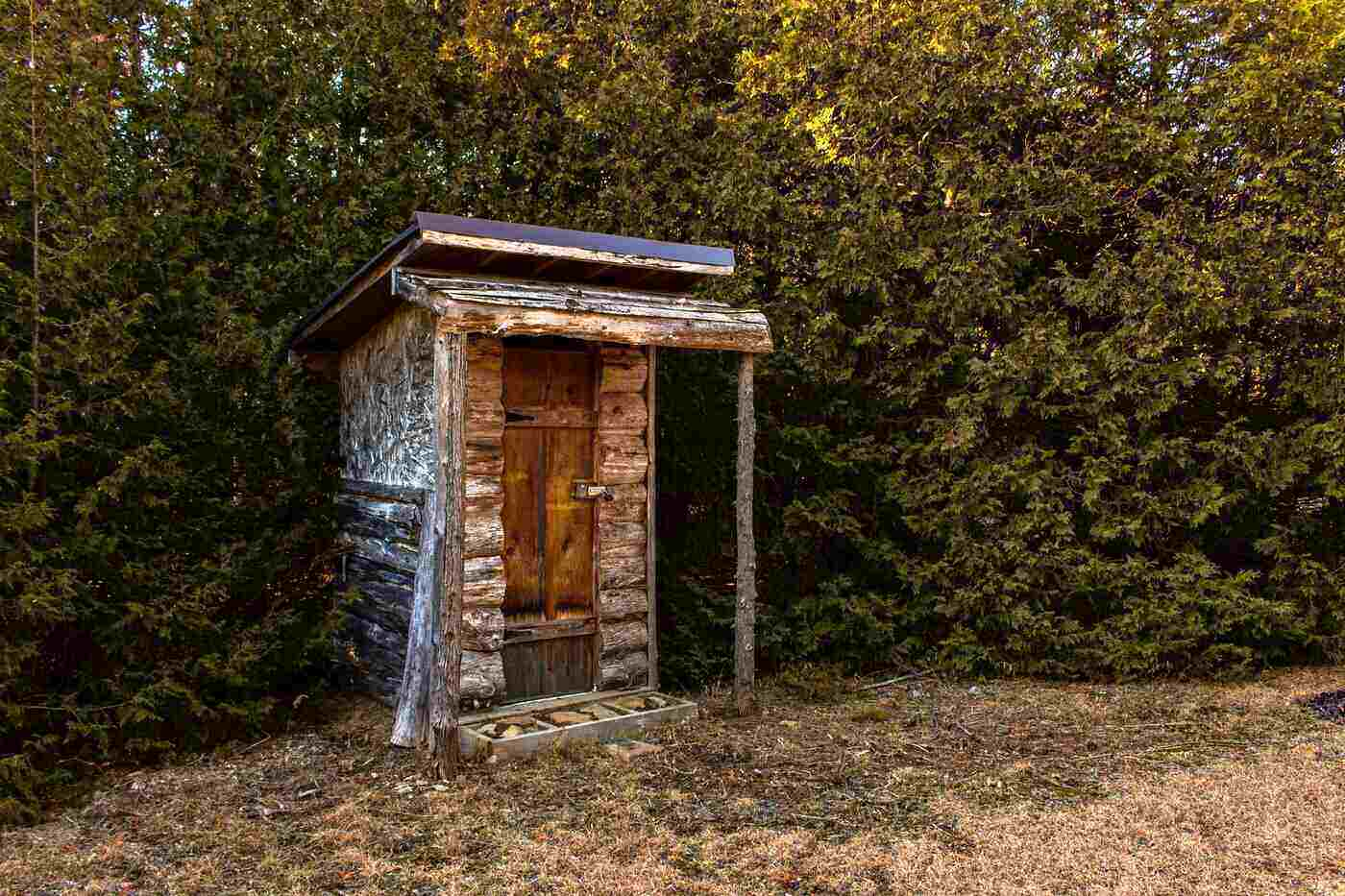 wooden outhouse by cedar trees - how to build a diy composting toilet