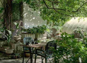 cat on table with chairs under trees in garden - 6 things to consider while building a garden seating area